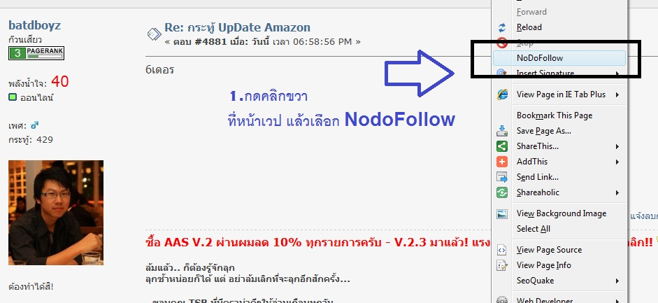 NoDoFollow Firefox Plugin